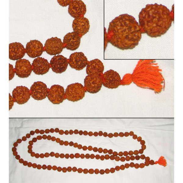 Rudraksha Mala (Large Beads), 54 Inches; Rough Quality